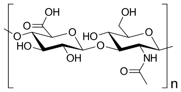 Hyluronic Acid